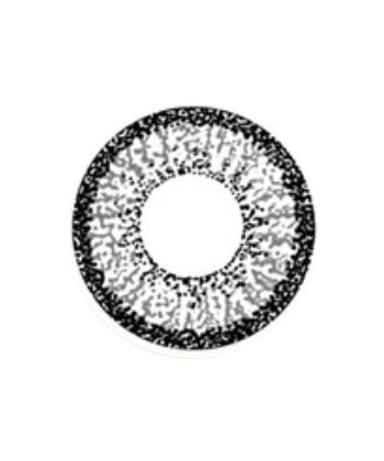 GEO COLOR NINE GRIS AN-A45 LENTILLE CONTACT GRISE