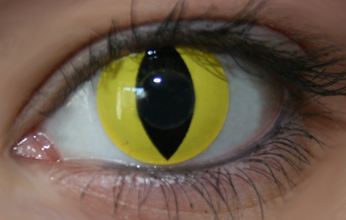 GEO SF-Y05 CRAZY LENS CHAT JAUNE LENTILLE DEGUISEMENT HALLOWEEN