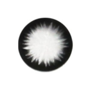 GEO XTRA BELLA NOIR WCK-112 LENTILLE CONTACT NOIRE
