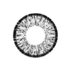 VASSEN EDWINA GRIS LENTILLE CONTACT GRISE